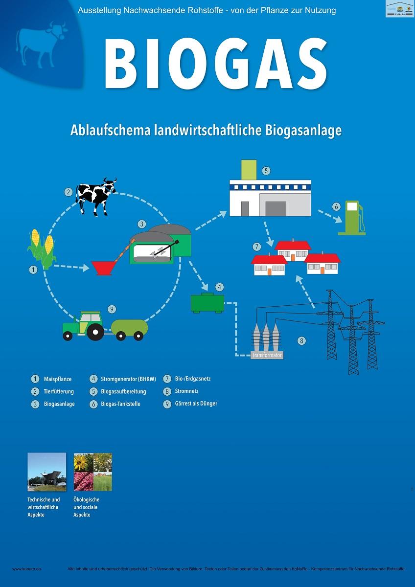 Abteilung 4: Biogas
