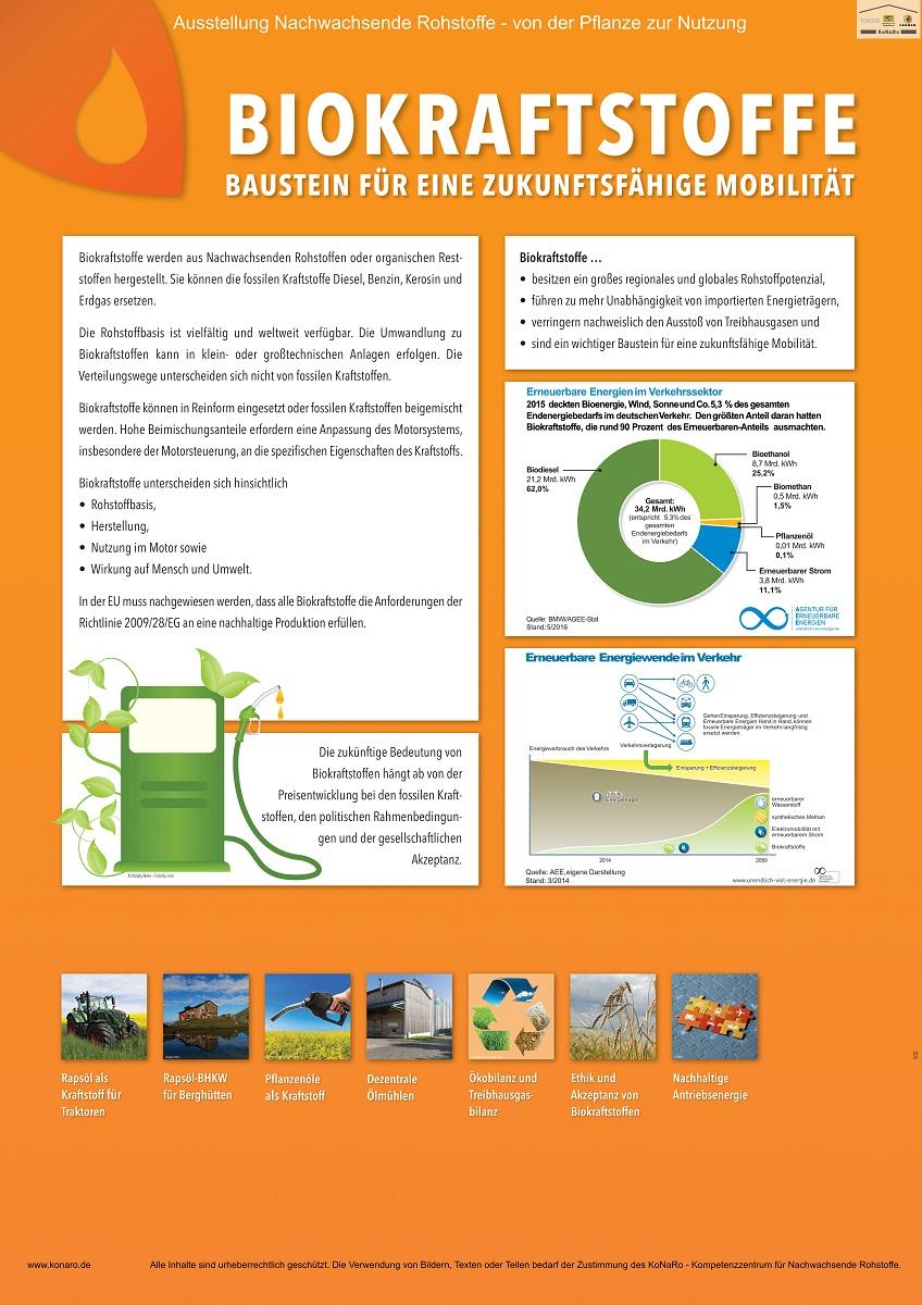 Abteilung 5: Biokraftstoffe