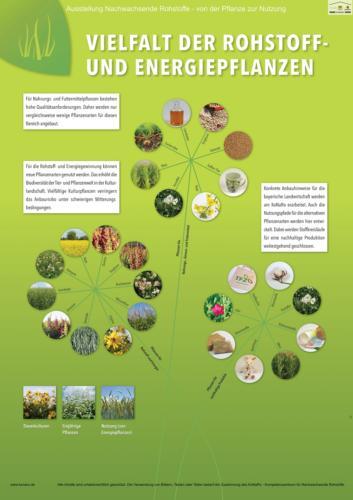 Abteilung 3: Vielfalt der Rohstoff- und Energiepflanzen
