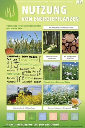 Abteilung 3: Nutzung von Energiepflanzen
