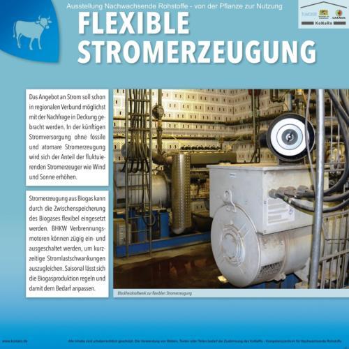 Abteilung 4: Flexible Stromerzeugung