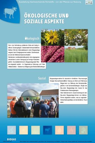 Abteilung 4: Ökologische und soziale Aspekte