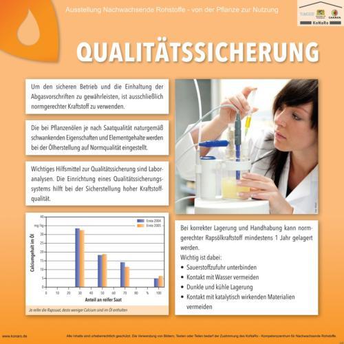 Abteilung 5: Qualitätssicherung