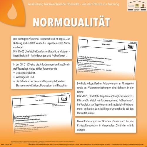 Abteilung 5: Normqualität