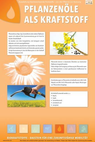 Abteilung 5: Pflanzenöle als Kraftstoff