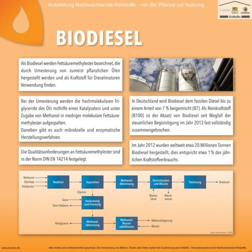Abteilung 5: Biodiesel
