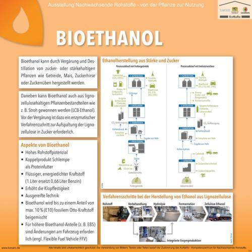 Abteilung 5: Bioethanol