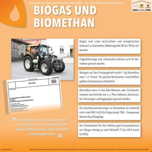 Abteilung 5: Biogas und -methan