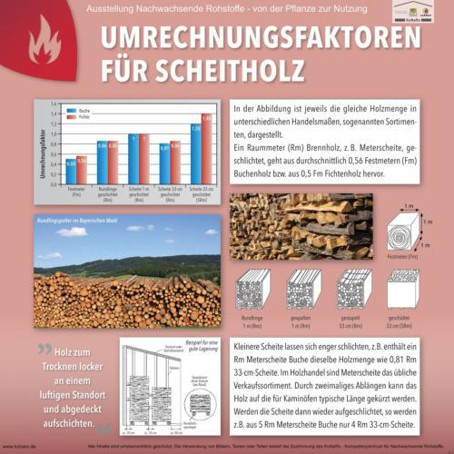 Abteilung 6: Umrechnungsfaktoren für Scheitholz