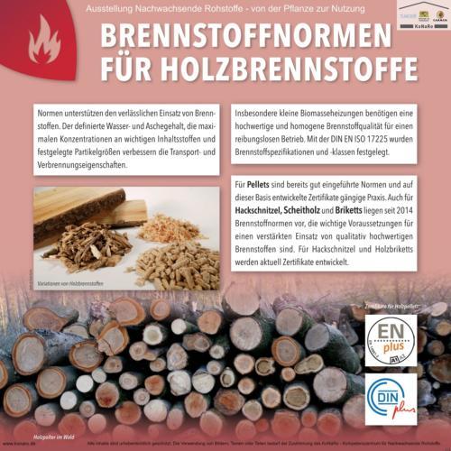 Abteilung 6: Brennstoffnormen für Holzbrennstoffe