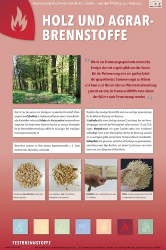 Abteilung 6: Holz- und Agrarbrennstoffe