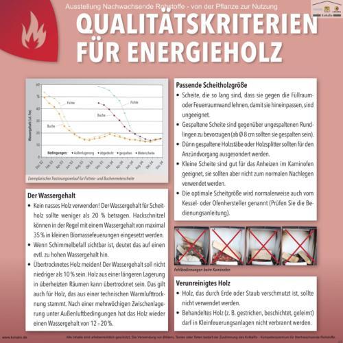 Abteilung 6: Qualitätskriterien für Energieholz