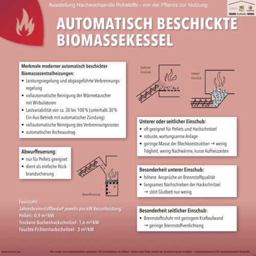 Abteilung 6: Automatisch beschickte Biomassekessel