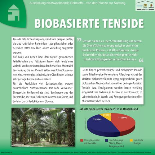 Abteilung 7: Biobasierte Tenside